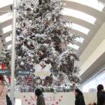 メリークリスマス 2014 @ 横浜