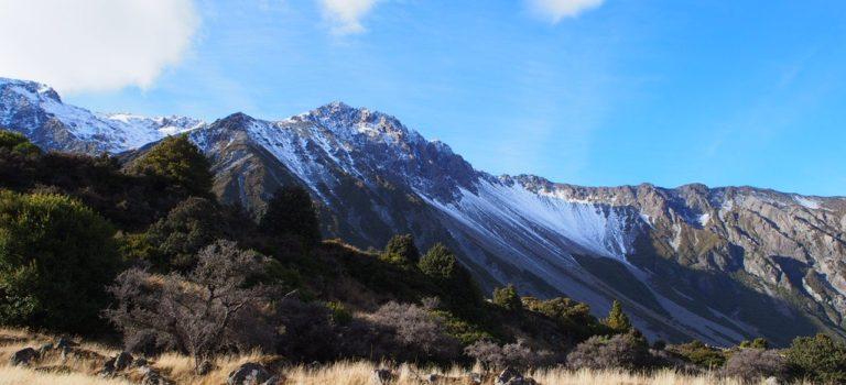冬のニュージーランドに行ってきた! 番外編