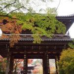 下関プチトリ6 〜錦秋の城下町長府をぶらり