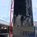 メルボルンに行ってきた! 〜その2  フィリップ島でペンギン・パレード