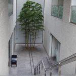 六本木フレンチと「至高のマティーニ」